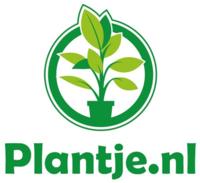 Plantje.nl folders