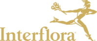 Interflora catalogues
